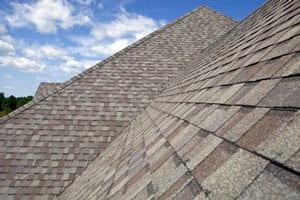 Roof Maxx Scientific Roof Shingle Treatment